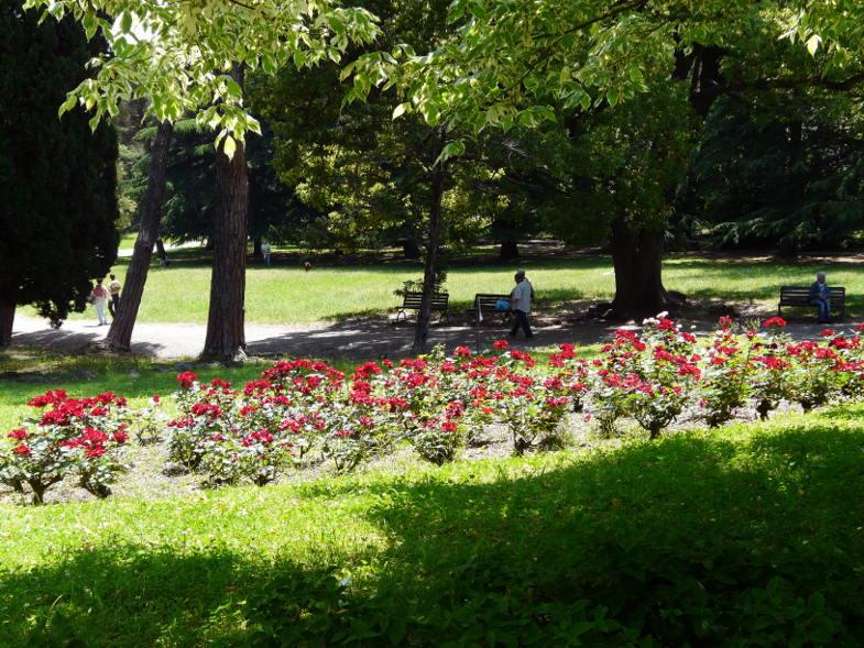 Parco di Arenzano, il roseto